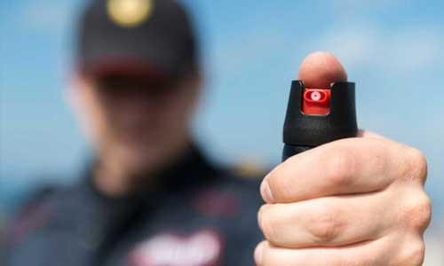Formation agent de sécurité renforcé armé (ASRA)